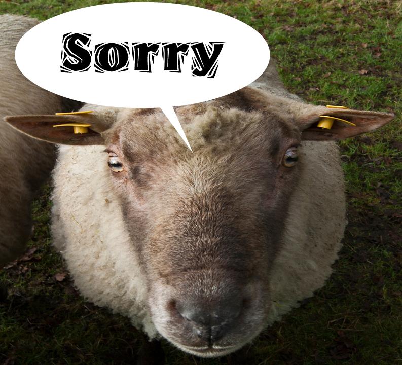 Talud deels afgezet vanwege grazende schapen
